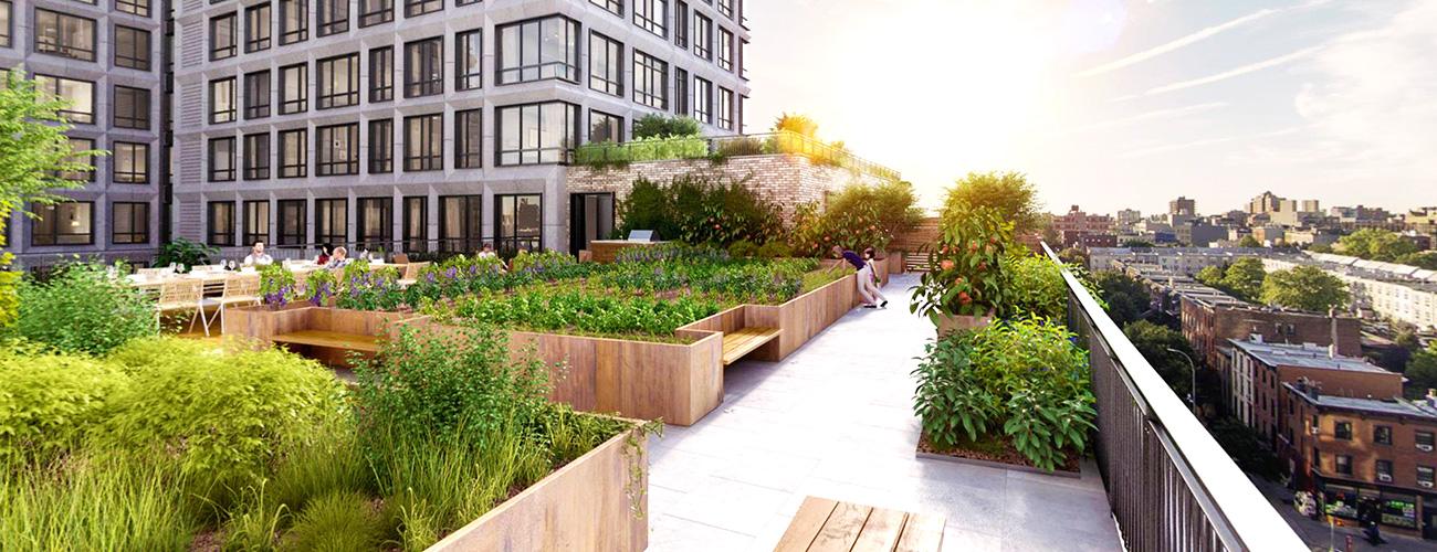 Flat Roof Garden Conversion